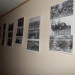 Фото №8: Заходи до відзначення Дня Пам'яті і примирення та 70-ої річниці Дня перемоги.