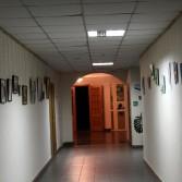Фото №1: Тиждень, присвячений українській художниці Катерині Білокур.